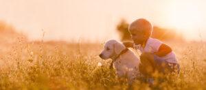 Hundeschule Liestal